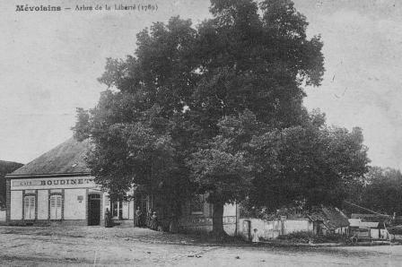 1910-5